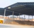 专业搭棚     钢结构    活动板房